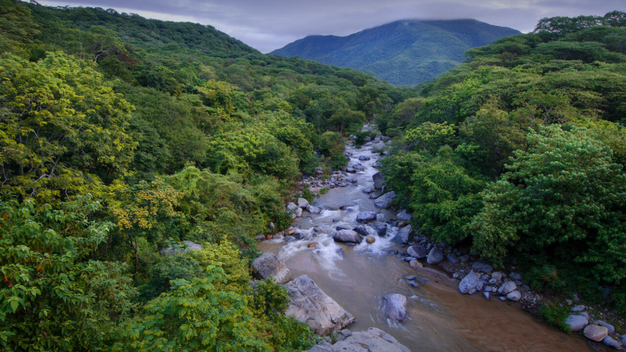 The watersheds and tropical forests in the mountains above Barra de la Cruz and Huatulco, Oaxaca help to store water and atmospheric carbon and are critical in the fight against climate change.  Photo: MIguel Angel de la Cueva